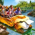 Busch Gardens Tampa Bay 120x120 Video 3