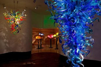 chihuly collection tampa 345x230 Tampa Sightseeing Attraction