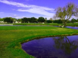clearwater golfclub 307x230 Tampa Championship Golf Value