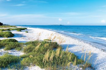 fort de soto park tampa 345x230 Tampa Beach Water Parks
