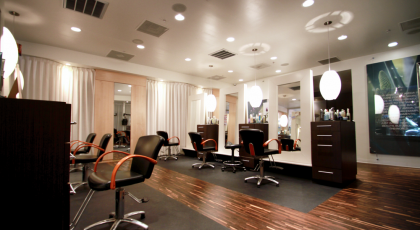 level salon spa 420x230 Tampa Spa