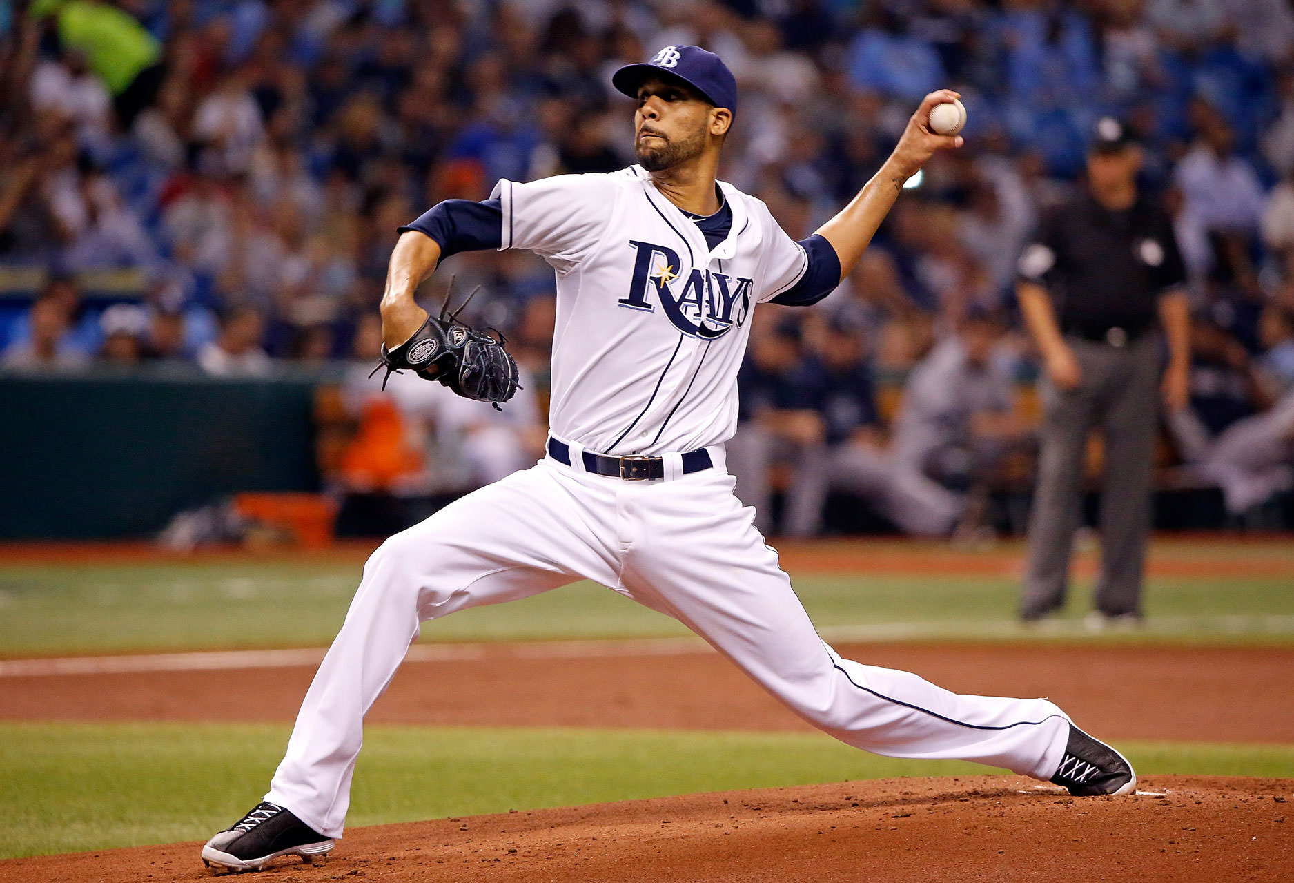 tampa bay rays Tampa Sports